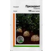 Сельдерей Президент (100 семян)