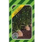 Сельдерей Диамант (100 семян)