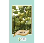 Гинкго двулопастный (5 семян)