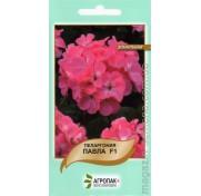 Пеларгония зональная Павла F1 (5 семян)