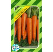 Морковь Вита Лонга (1 г)