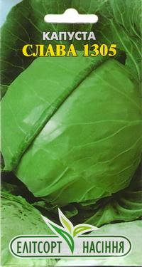 Капуста белокочанная: посадка, выращивание, сорта на